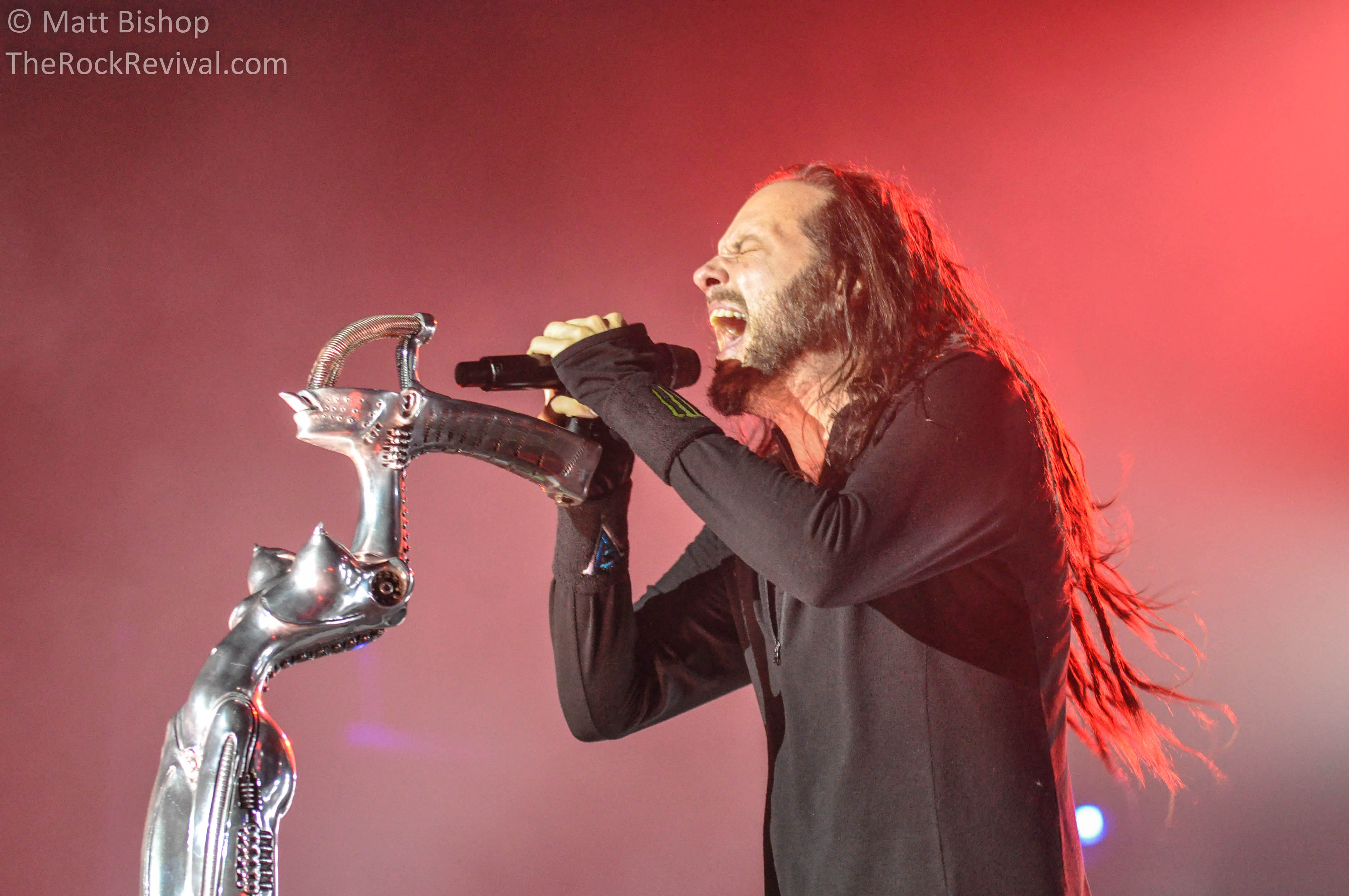 Korn new album Archive...