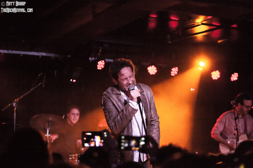 David Duchovny Webster Hall
